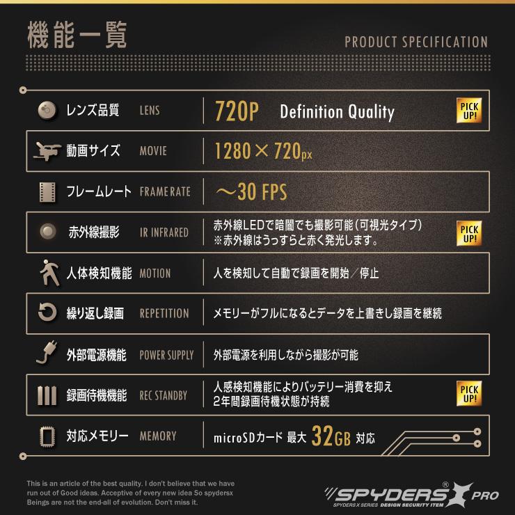 アートフレーム型カメラ フォトフレーム 小型カメラ スパイダーズX PRO (PR-816)