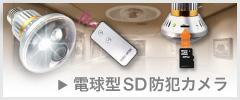 電球型SD防犯カメラ